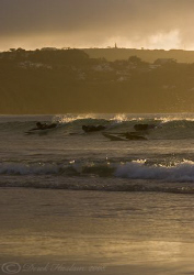 Hayle beach surfers. Cornwall. S5 PRO. 18-200mm. by Derek Haslam 